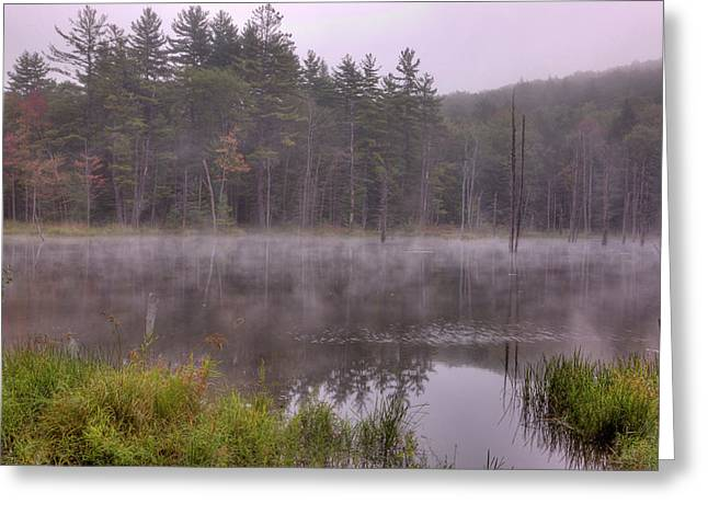 Greeting Card featuring the photograph Madame Sherri's Pond IIi by Tom Singleton