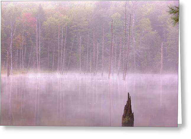 Greeting Card featuring the  Madame Sherri's Pond by Tom Singleton