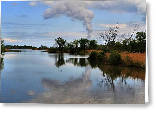 Magee Marsh Reflection Greeting Card by Dan Sproul