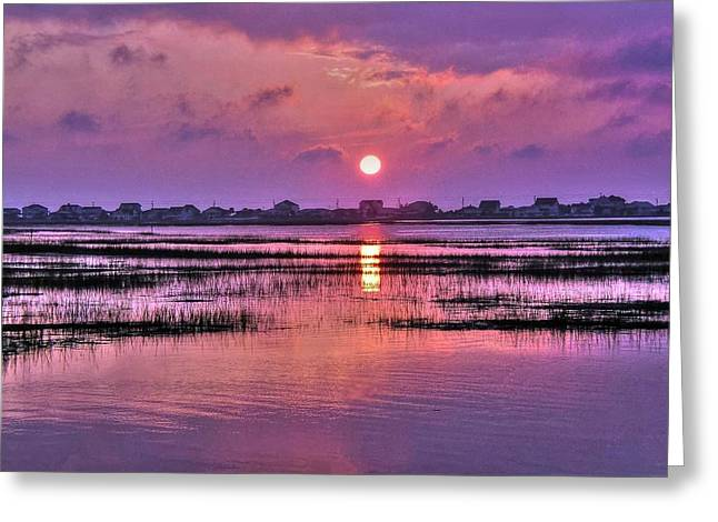 Magenta Sunrise Greeting Card by Ed Roberts