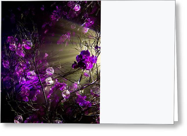 Magic Rays Greeting Card by Nadya Ost