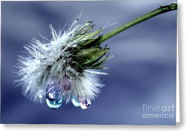 Magic Wand Of Wishes Greeting Card by Krissy Katsimbras
