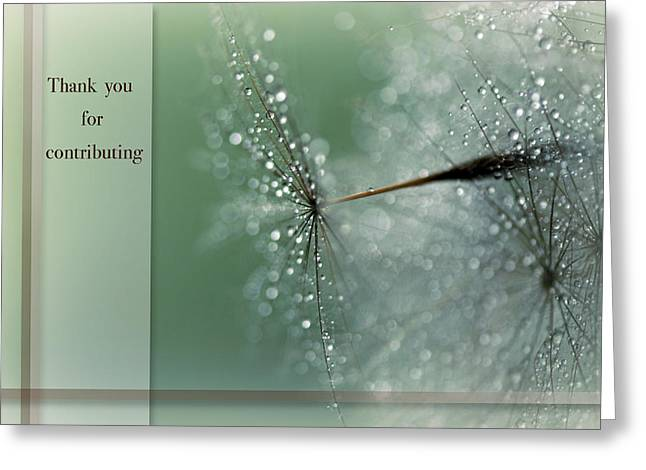 Magical Bokeh Thank You Card Greeting Card by Lisa Knechtel