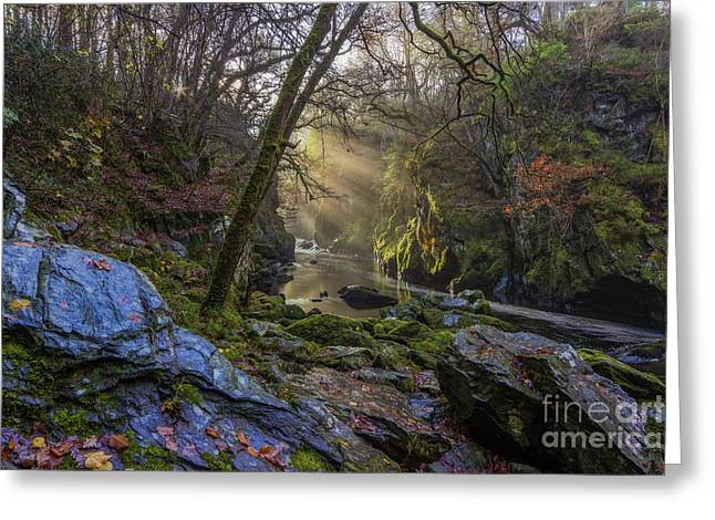 Magical Fairy Glen Greeting Card by Ian Mitchell