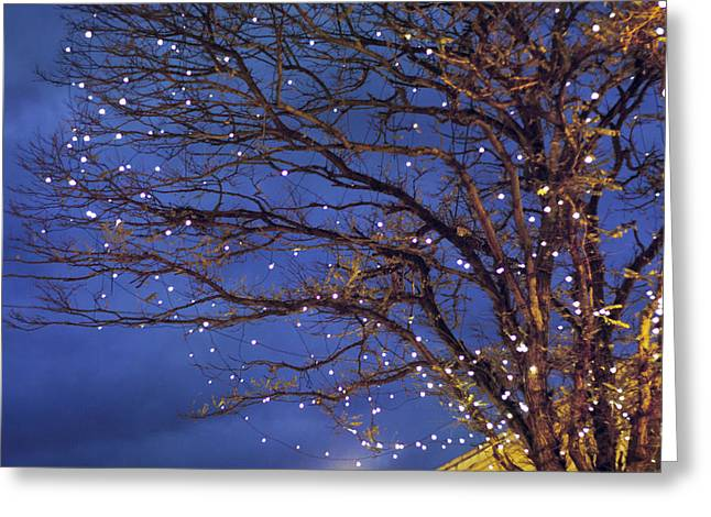 Magical In Blue Greeting Card by Violet Gray