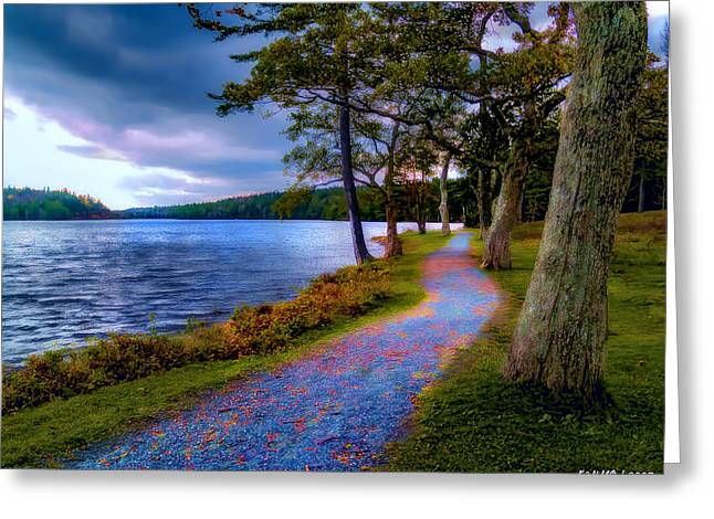 Magical Path Greeting Card