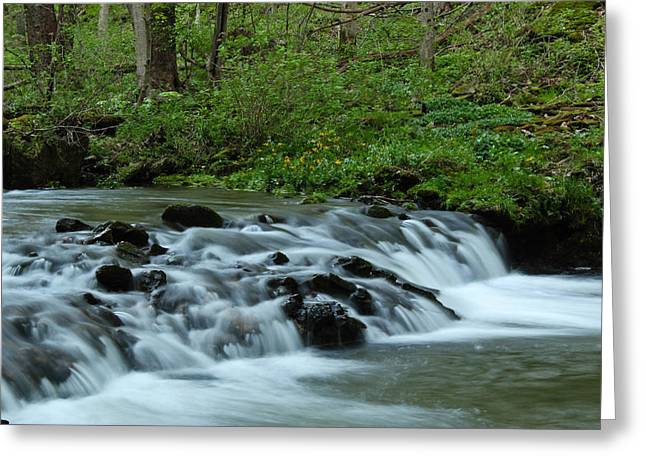 Magical River Greeting Card by Julie Andel