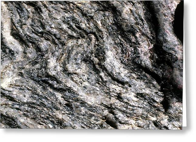 Magnification Of Grain Of Gneiss Rock Greeting Card by Dorling Kindersley/uig