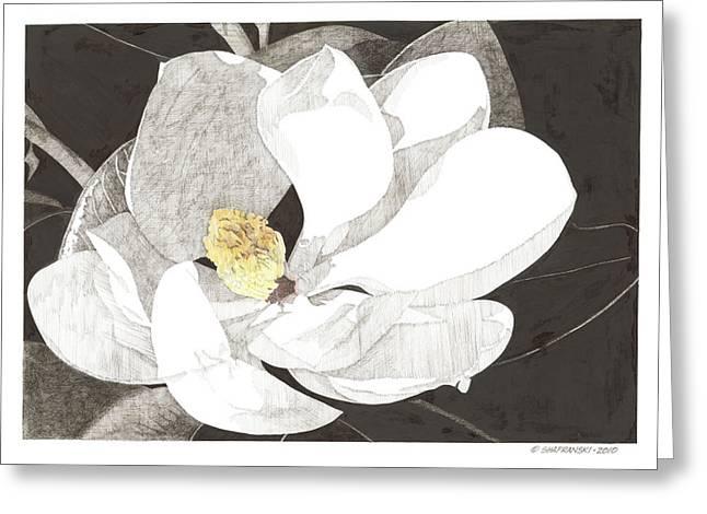 Magnolia 1 Greeting Card by Paul Shafranski