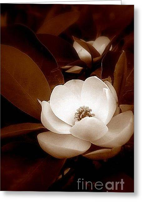 New Orleans Magnolia Beauty Greeting Card