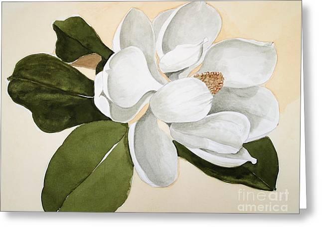 Magnolia Bloom Greeting Card by Nancy Kane Chapman