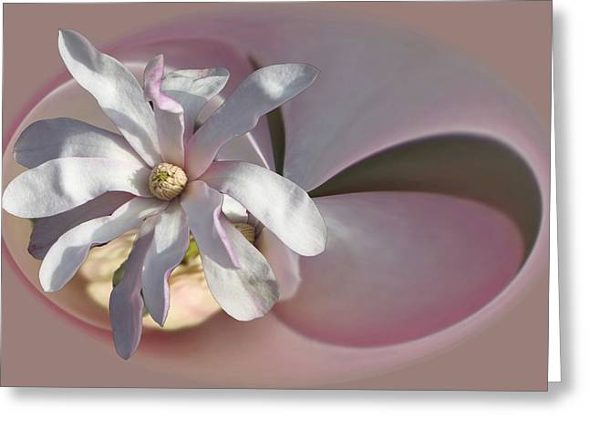 Magnolia Blossom Series 707 Greeting Card