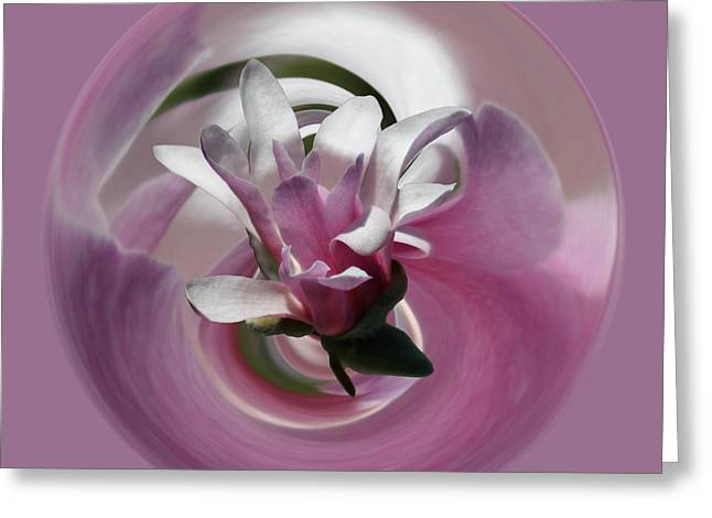 Magnolia Blossom Series 708 Greeting Card