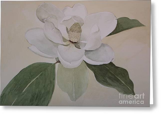 Magnolia Delight Greeting Card by Nancy Kane Chapman