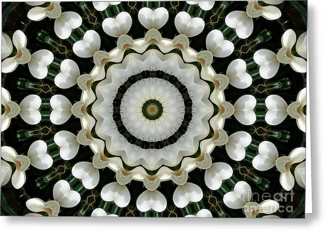 Magnolia Hearts Mandala Greeting Card