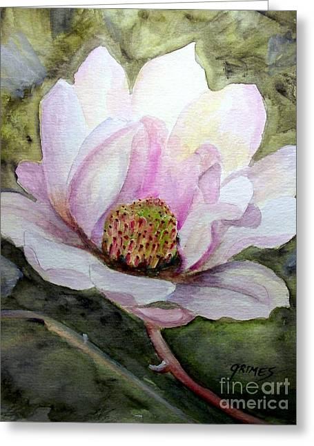 Magnolia In Bloom Greeting Card by Carol Grimes