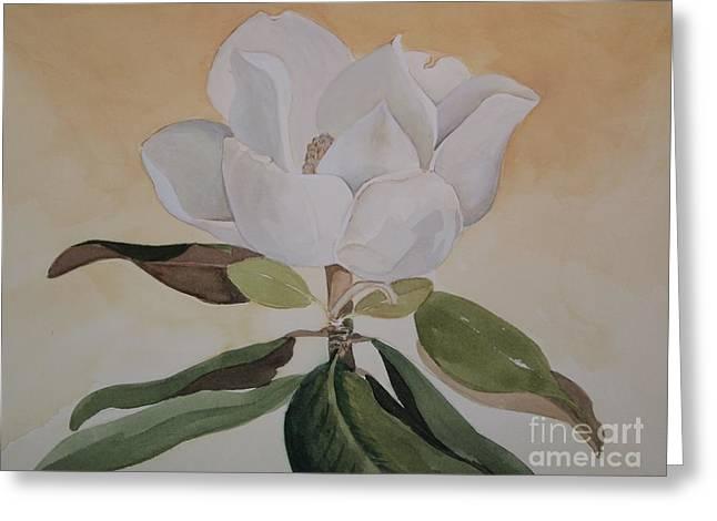 Magnolia Morning Greeting Card by Nancy Kane Chapman