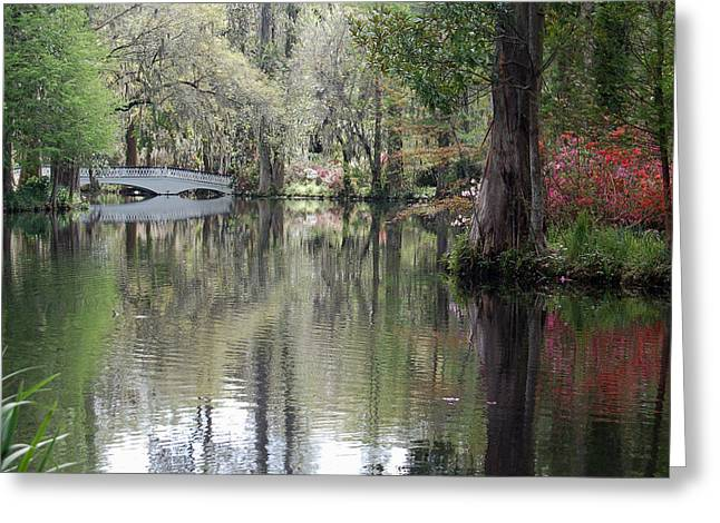 Magnolia Plantation Gardens Series II Greeting Card by Suzanne Gaff