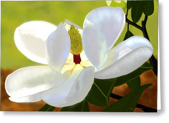 Magnolia Greeting Card by Tim Stringer