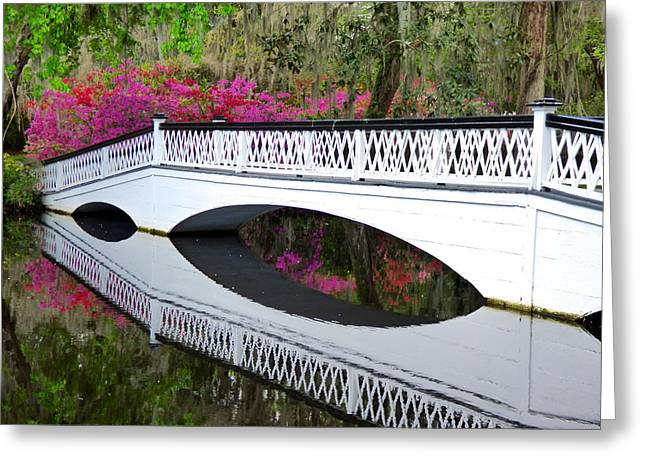 Magnolia White Bridge Greeting Card