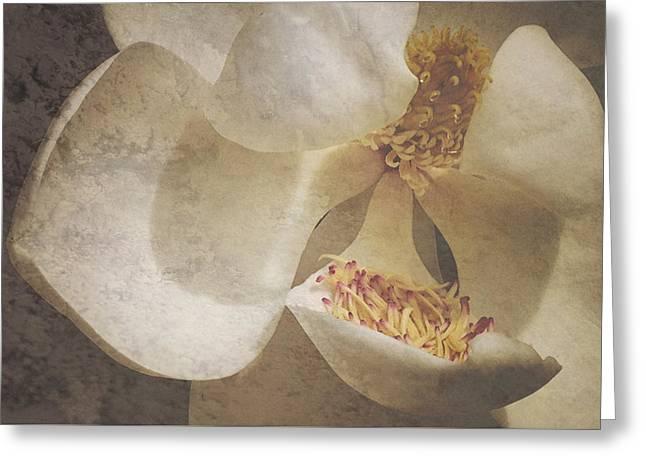 Magnolia Ya Sweet Thang Greeting Card