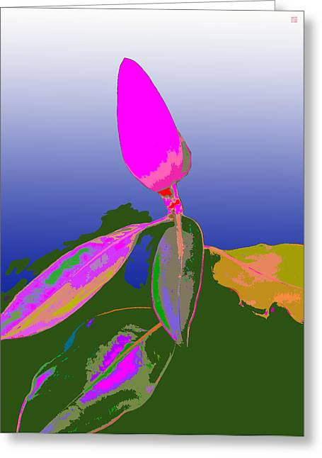 Magnolia2 Greeting Card by Roger Smith