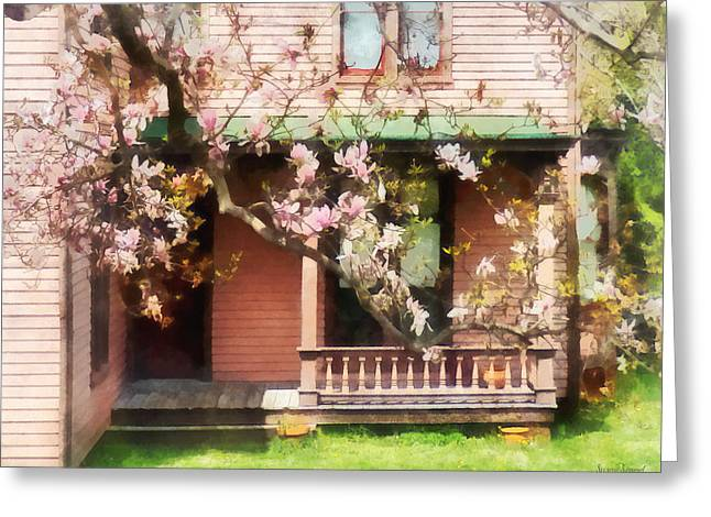 Magnolias By Back Porch Greeting Card