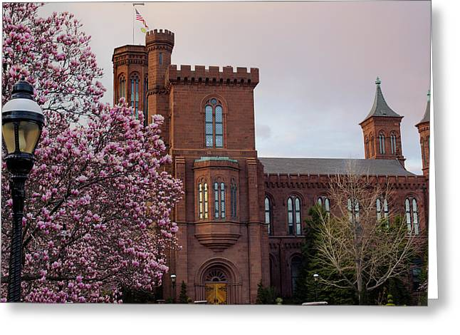 Magnolias Near The Castle Greeting Card by Andrew Pacheco