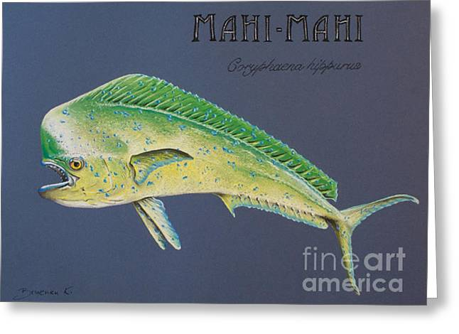 Mahi-mahi Greeting Card by Katharina Filus