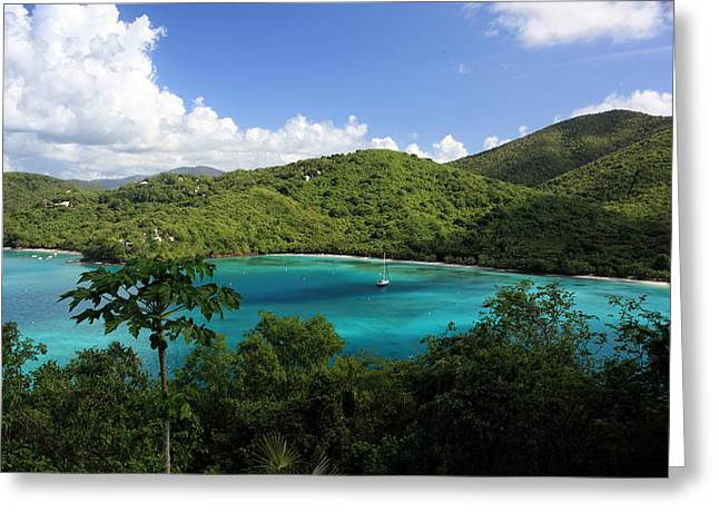 Maho Bay Greeting Card by Heather Green