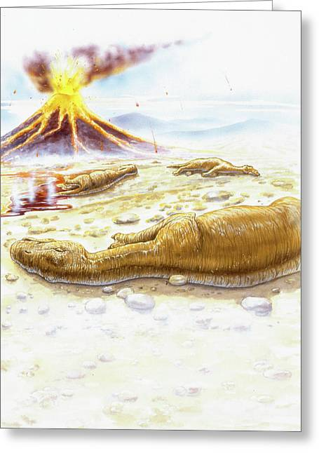 Maiasauras Killed By Volcanic Eruption Greeting Card by Deagostini/uig