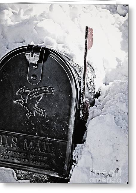 Mailbox Buried In Snow Greeting Card by Birgit Tyrrell