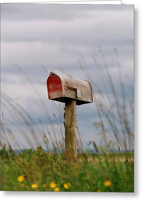Mailbox Greeting Card by Michele Wright