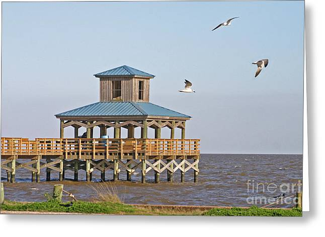 Main Pier At Pleasure Island Greeting Card by D Wallace