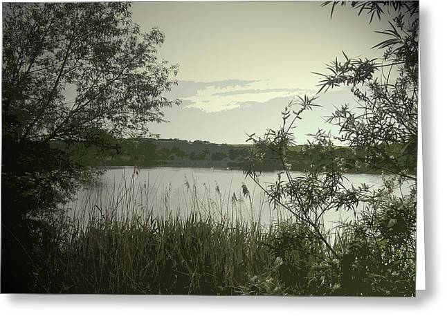 Main Pond At Carr Vale Flash Nature, This Nature Reserve Greeting Card by Litz Collection