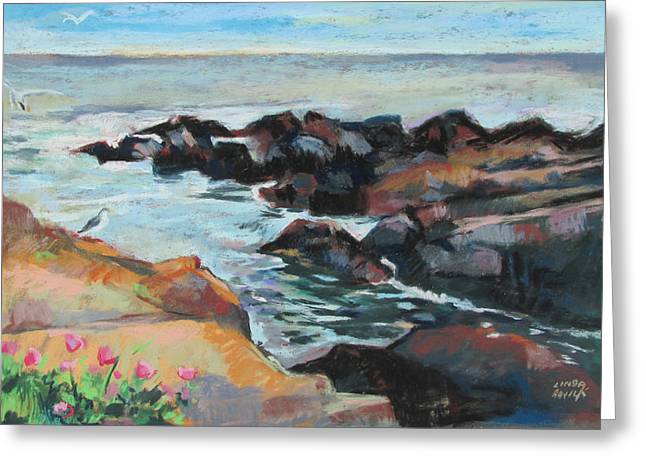 Maine Coast Rocks And Birds Greeting Card