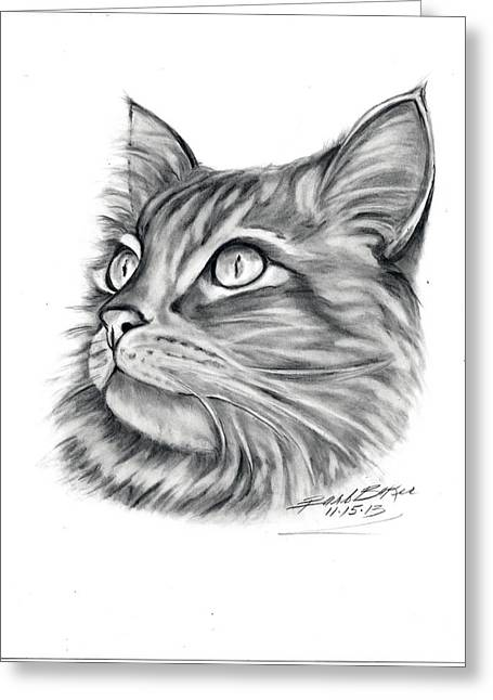 Maine Coon Greeting Card by Barb Baker