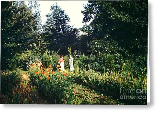 Maine Garden Greeting Card