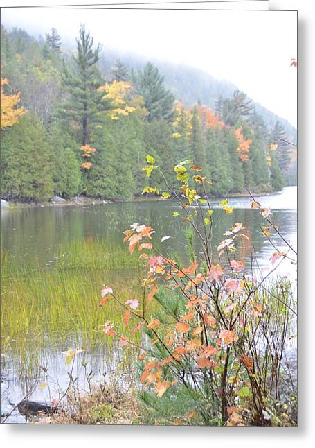 Maine Lake Colors Greeting Card