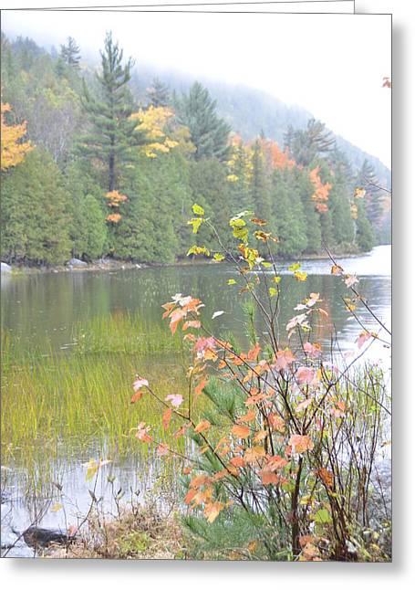 Maine Lake Colors Greeting Card