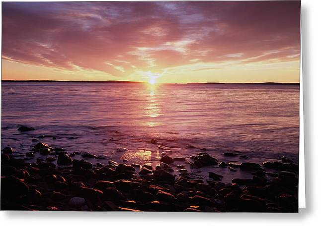 Maine, Sunrise Over The Rocky Shoreline Greeting Card by Christopher Talbot Frank