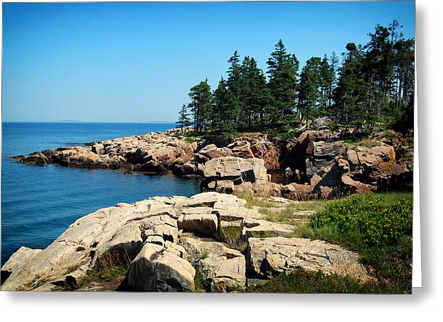 Maine's Rocky Coastline Greeting Card by Mountain Dreams