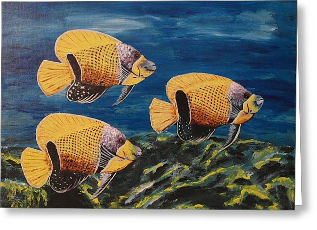 Majestic Angelfish Greeting Card by Wayne Cantrell