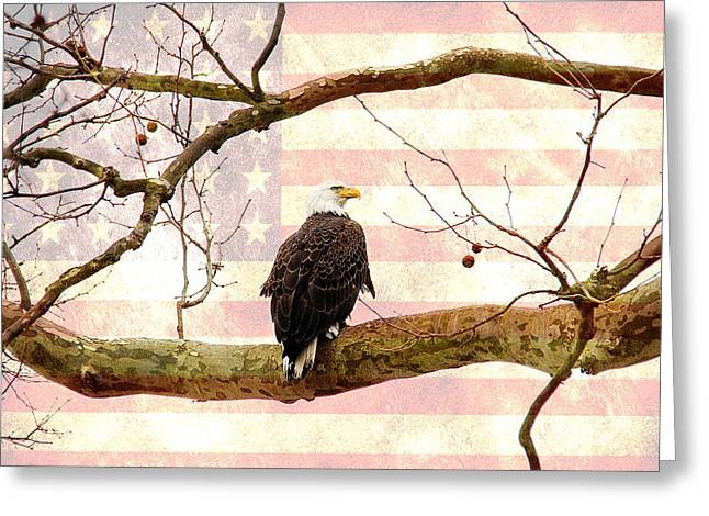 Greeting Card featuring the photograph Majestic II by Trina  Ansel