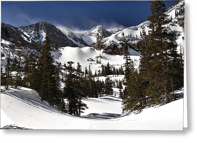 Greeting Card featuring the photograph Majestic by Steven Reed
