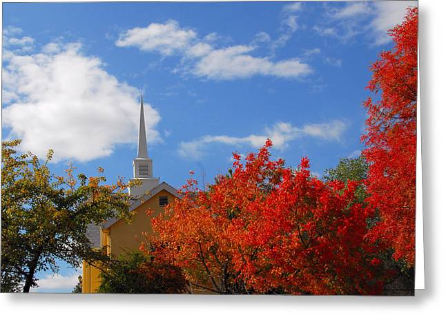 Greeting Card featuring the photograph Majesty by Lynn Bauer