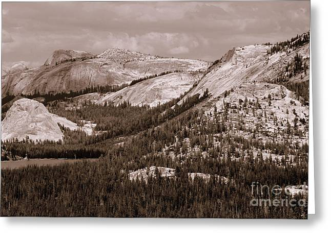 Majesty Mountains Sepia  Greeting Card