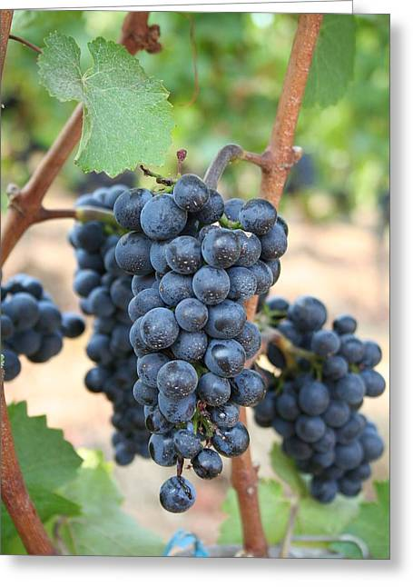 Make Me Wine Greeting Card by Debra Kaye McKrill