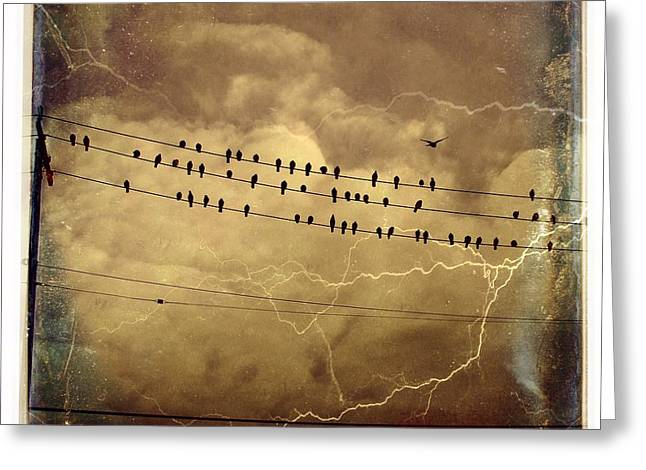 Make Room For Me Greeting Card by Gothicrow Images