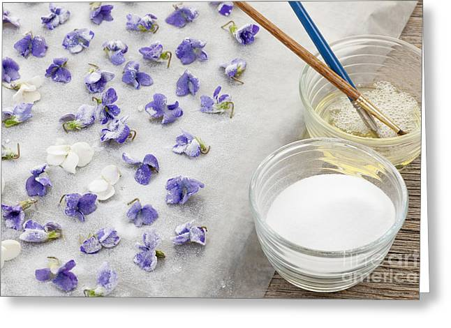 Making Candied Violets Greeting Card by Elena Elisseeva